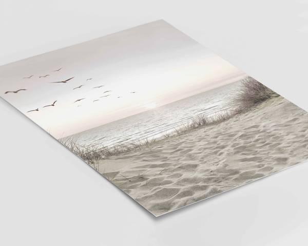 Bilde av Birds on the beach plakat