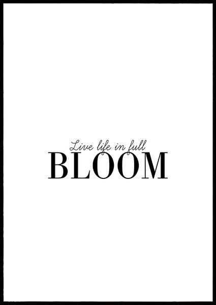 Bilde av Live life in full bloom plakat