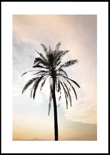 Bilde av SUNSET PALM PLAKAT