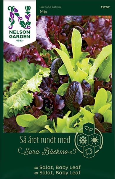 Bilde av Salat, Baby Leaf Baby Leaf mix