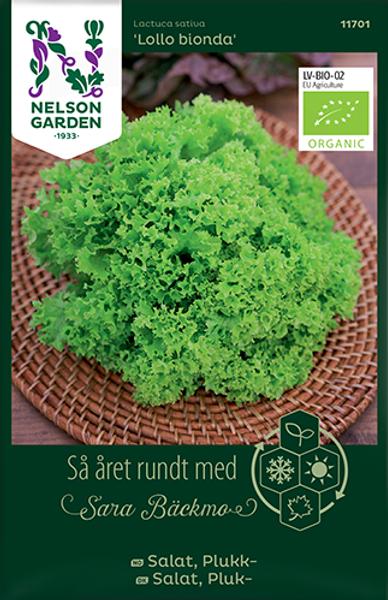 Bilde av Salat, Plukk- 'Lollo Bionda'
