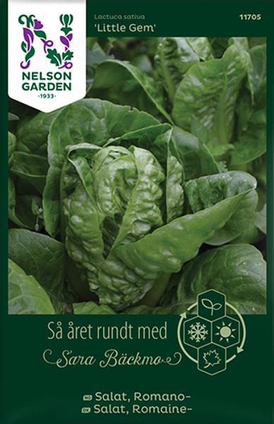 Bilde av Salat, Romano- 'Little Gem'