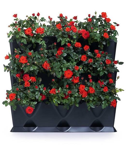 Bilde av Minigarden Vertical, 9 planter - TV2;