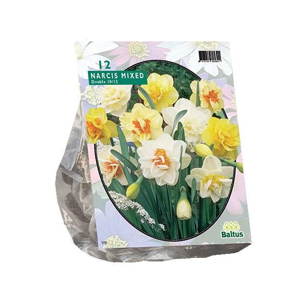 Bilde av Narcis 'Dubbel Mix ' 12 stk  blomsterløk.