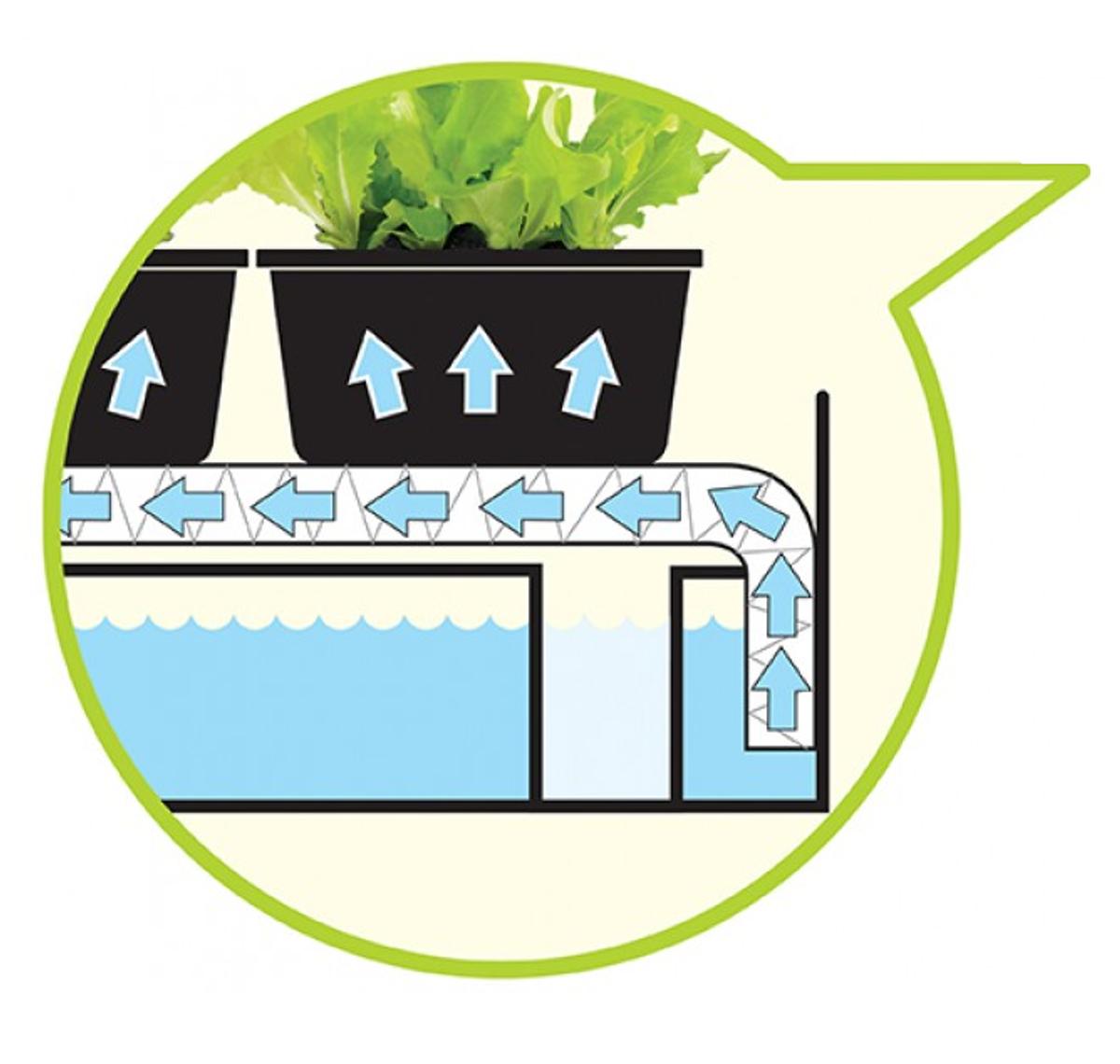 Micro Grow Light Garden. Svart