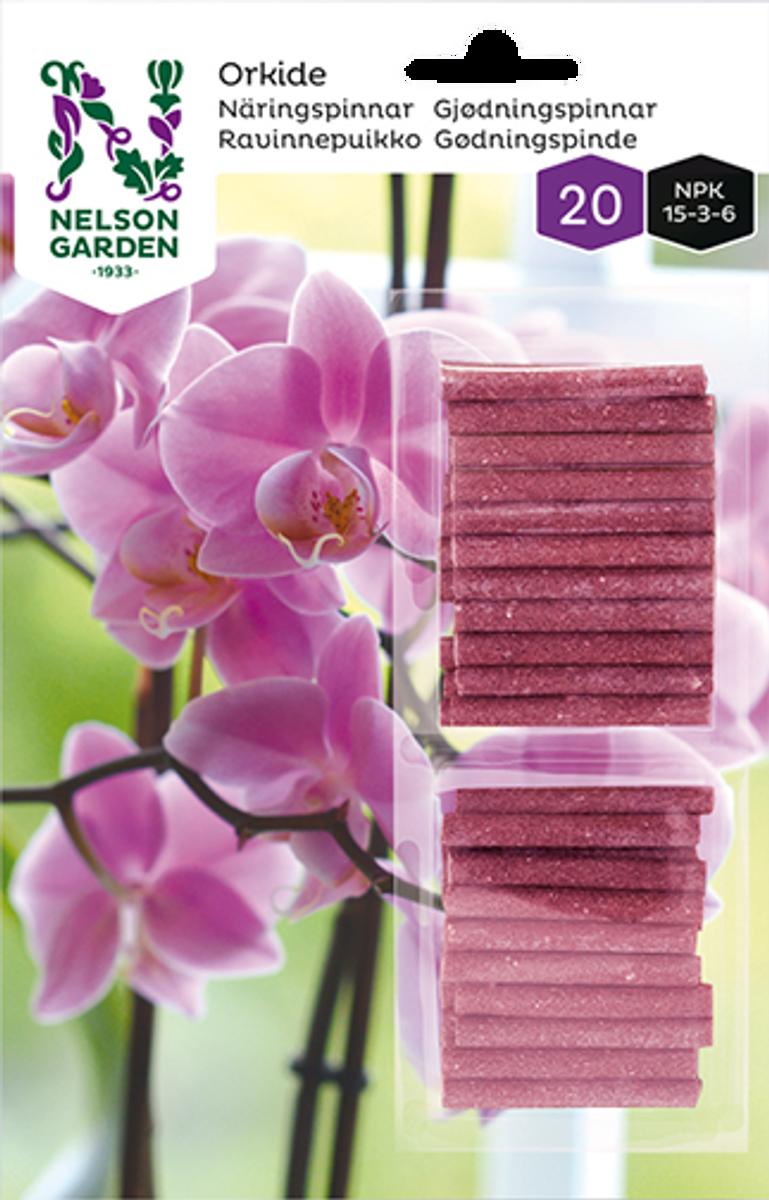 Næringspinner orkidé