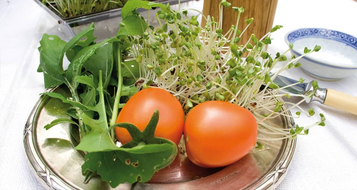 Brokkoli Organic