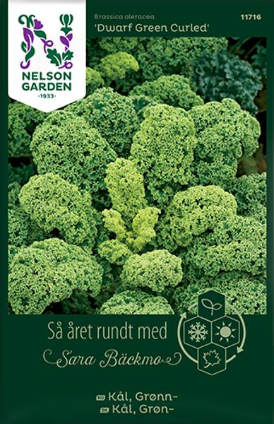 Bilde av Kål, Grønn- 'Half Tall'