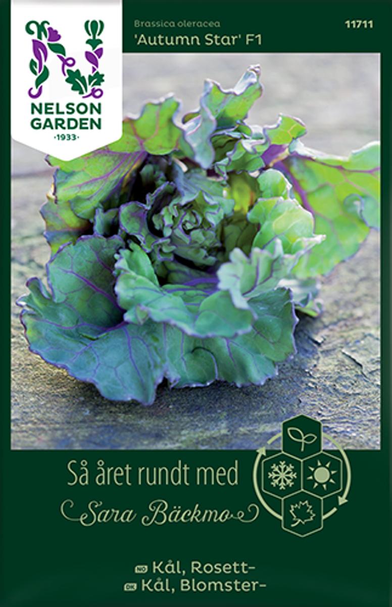 Kål, Rosett- Kalette 'Autumn Star' F1