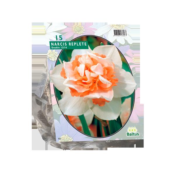 Bilde av Narcis 'Replete'. -15 stk. blomsterløk av