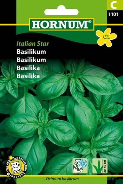Bilde av Basilikum  Italian Star(Lat: Ocimum basilicum)