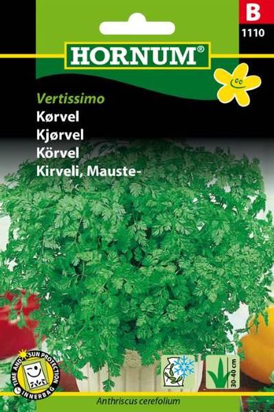Bilde av Kjørvel Vertissimo(Lat: Anthriscus cerefolium)