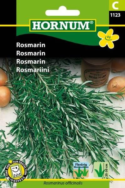 Bilde av Rosmarin(Lat: Rosmarinus officinalis)