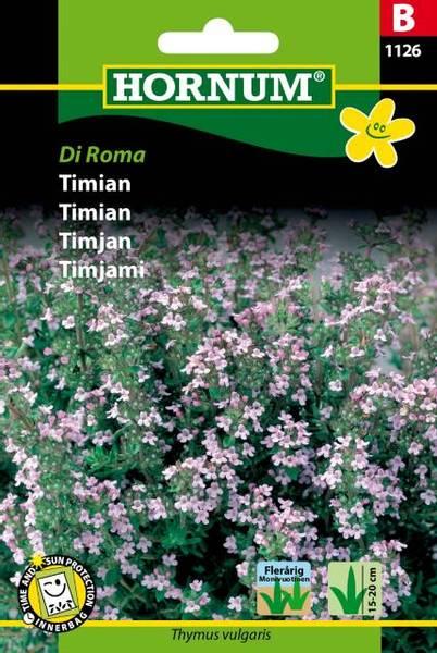 Bilde av Timian Di Roma(Lat: Thymus vulgaris)