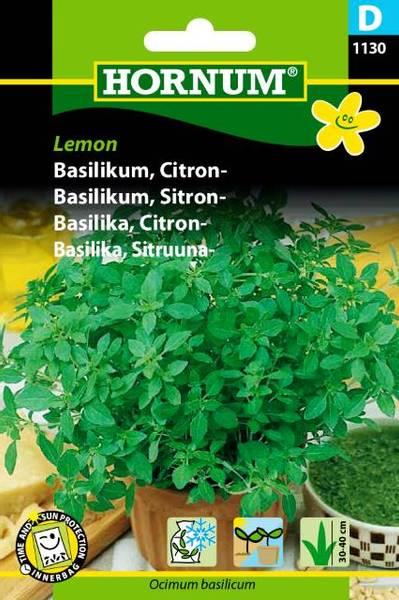 Bilde av Basilikum, Sitron-Lemon(Lat: Ocimum basilicum)