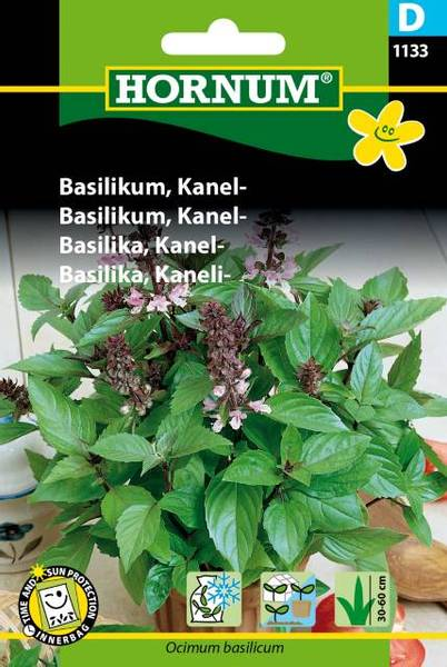 Bilde av Basilikum, Kanel-(Lat: Ocimum basilicum)