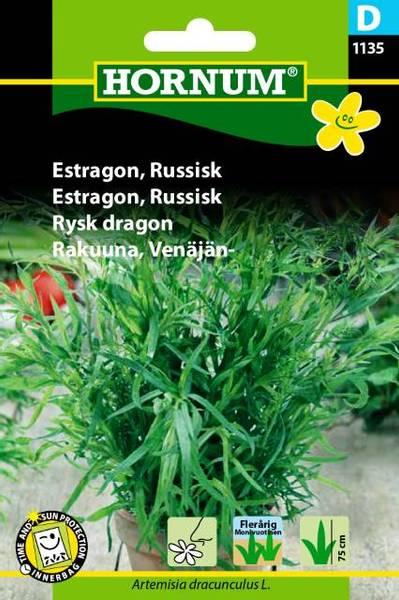 Bilde av Estragon, Russisk(Lat: Artemisia dracunculus L.)