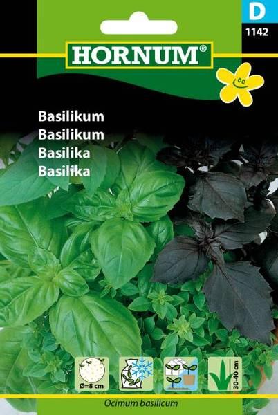Bilde av Basilikum(Lat: Ocimum basilicum)