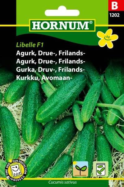 Bilde av Agurk, Drue-, Frilands-Libelle  (Lat: Cucumis