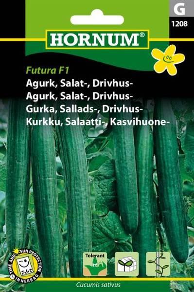 Bilde av Agurk, Salat-, Drivhus-Futura  (Lat: Cucumis