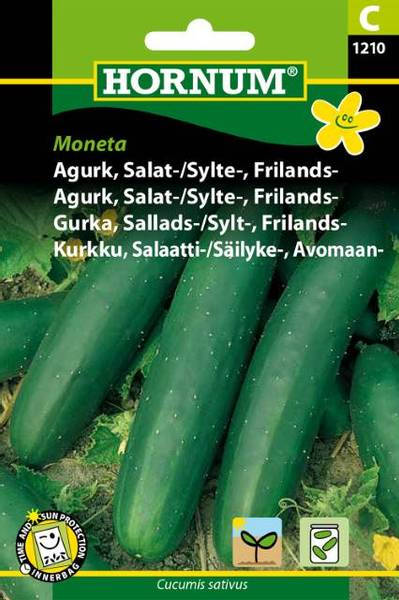 Bilde av Agurk, Salat-/Sylte-, Frilands-Moneta(Lat:
