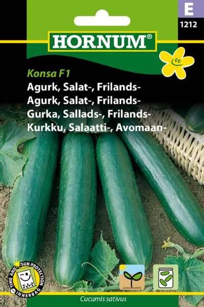 Bilde av Agurk, Salat-, Frilands-Konsa  (Lat: Cucumis