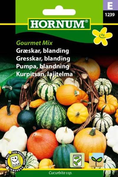 Bilde av Gresskar, blanding, Gourmet Mix(Lat: Cucurbita