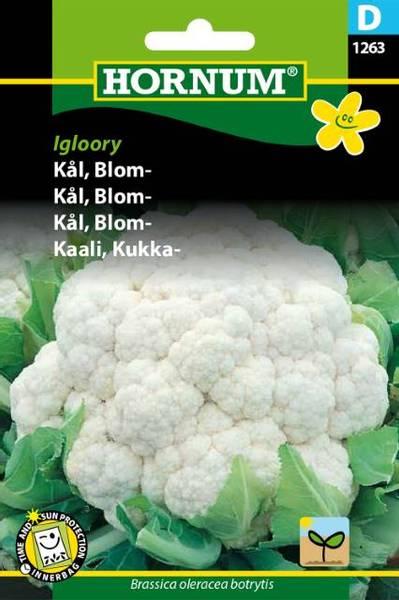 Bilde av Kål, Blom-Igloory(Lat: Brassica oleracea