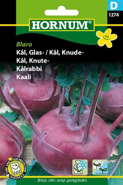 Bilde av Kål, Knute-Blaro(Lat: Brass. oler. acep.