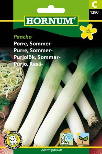 Bilde av Purre, Sommer-Pancho(Lat: Allium porrum)
