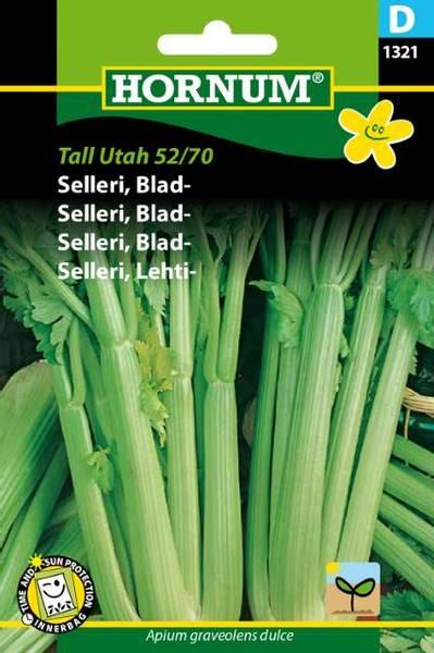Bilde av Selleri, Blad-Tall Utah 52/70(Lat: Apium