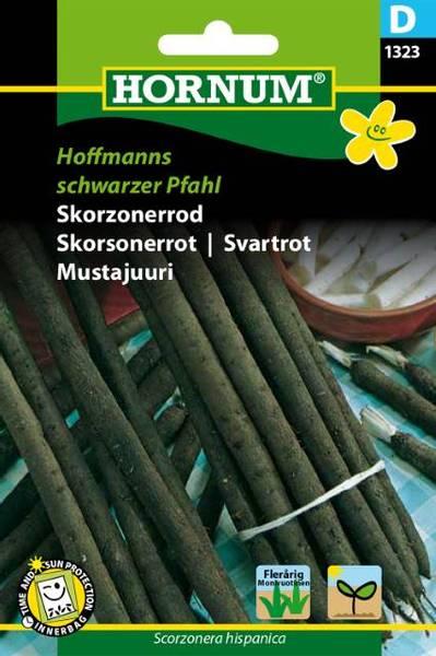 Bilde av Skorsonerrot Hoffmanns schwarzer Pfahl(Lat: