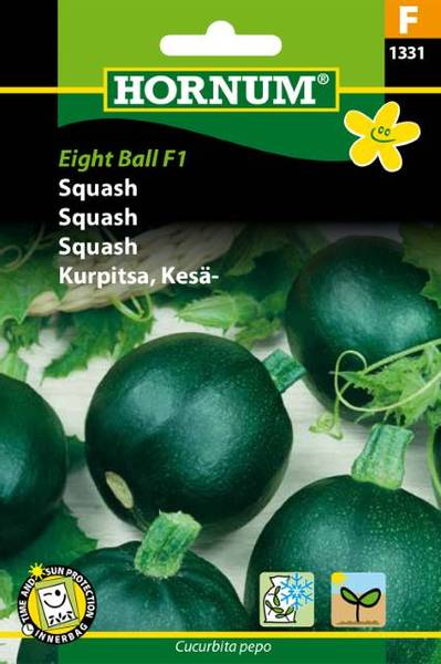 Bilde av Squash Eight Ball  (Lat: Cucurbita pepo)