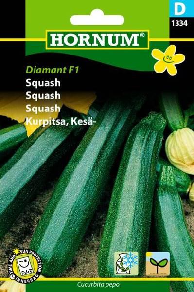 Bilde av Squash Diamant  (Lat: Cucurbita pepo)