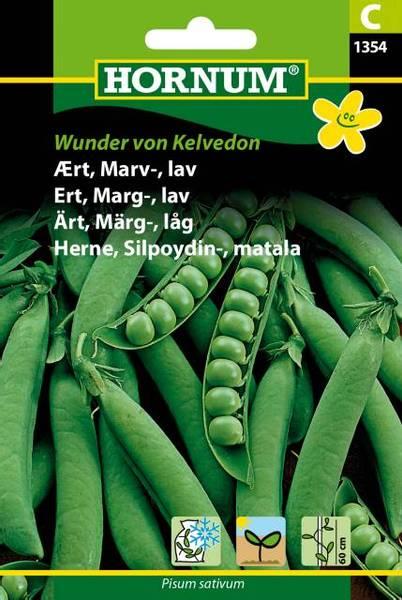 Bilde av Ert, Marg-, lavWunder von Kelvedon(Lat: Pisum