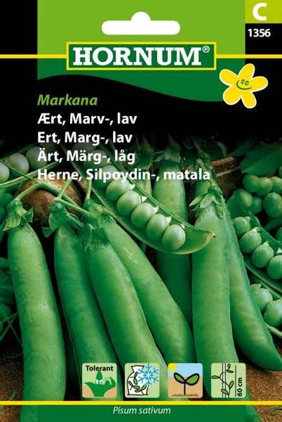 Bilde av Ert, Marg-, lavMarkana(Lat: Pisum sativum)