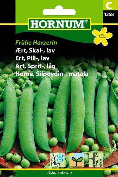 Bilde av Ert, Pill-, lavFrühe Harzerin(Lat: Pisum sativum)
