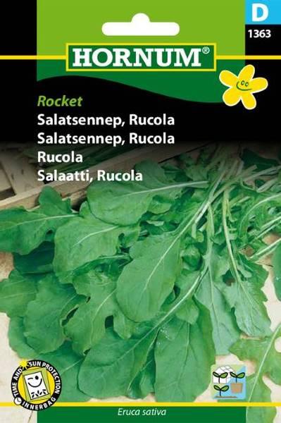 Bilde av Salatsennep, RucolaRocket(Lat: Eruca sativa)