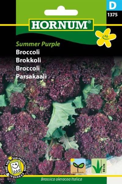 Bilde av Brokkoli Summer Purple(Lat: Brassica oleracea