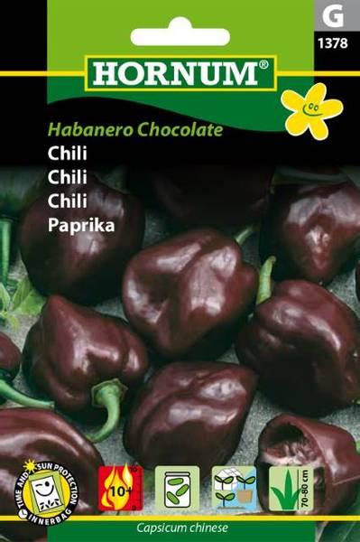 Bilde av Chili Habanero Chocolate(Lat: Capsicum chinese)