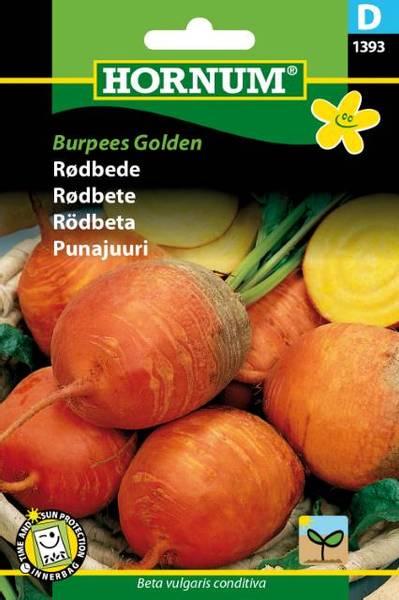 Bilde av Rødbete Burpees Golden(Lat: Beta vulgaris
