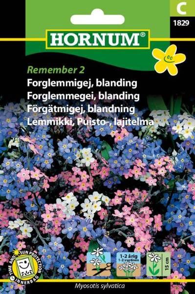 Bilde av Forglemmegei, blanding, Remember 2(Lat: Myosotis