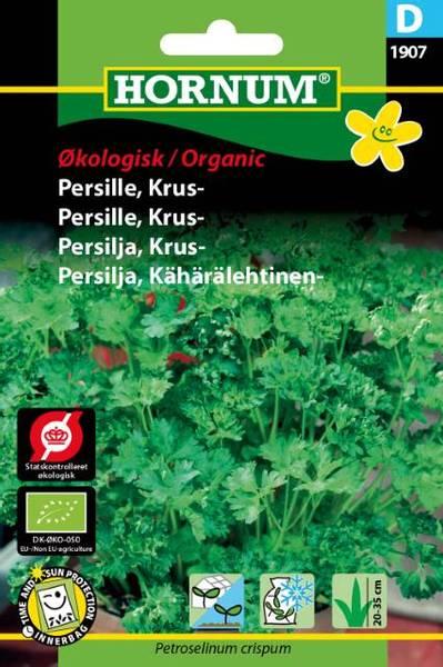 Bilde av Persille, Krus-Grüne Perle(Lat: Petroselinum