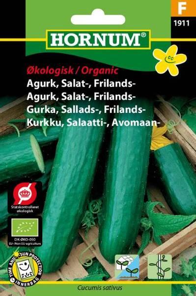 Bilde av Agurk, Salat-, Frilands-Sonja(Lat: Cucumis