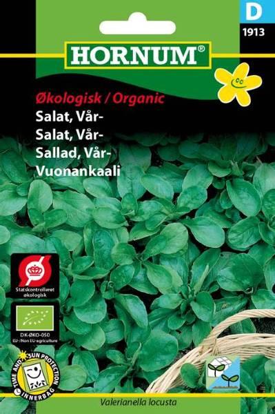Bilde av Salat, Vår-Vit(Lat: Valerianella locusta)