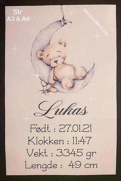 Fødselsplakat m/bilde og info