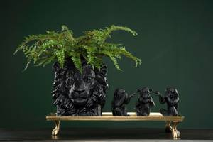 Bilde av Krukke - løve, sort