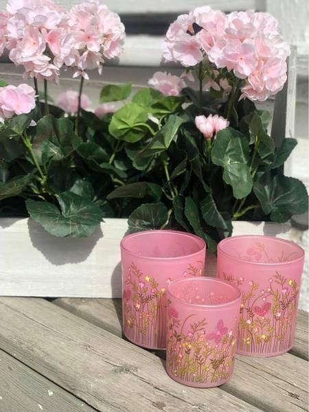 Småblomstrete lysglass, rosa, stor