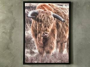 Bilde av Bilde okse 60x80 cm.
