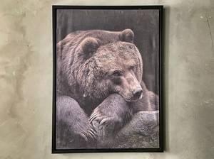 Bilde av Bilde sovende bjørn 60x80 cm
